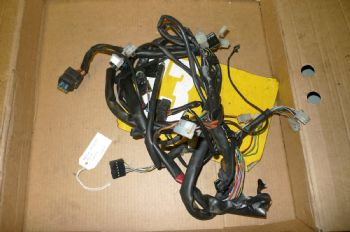 APRILIA ATLANTIC 125  MAIN HARNESS WIRING LOOM #1  (67-A)